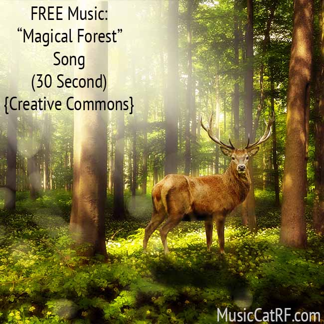 """FREE Music: """"Magical Forest"""" Song (30 Second) {Creative Commons}"""