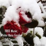 "FREE Music: ""Winter Rose Garden"" Song (60 Second) {Creative Commons}"